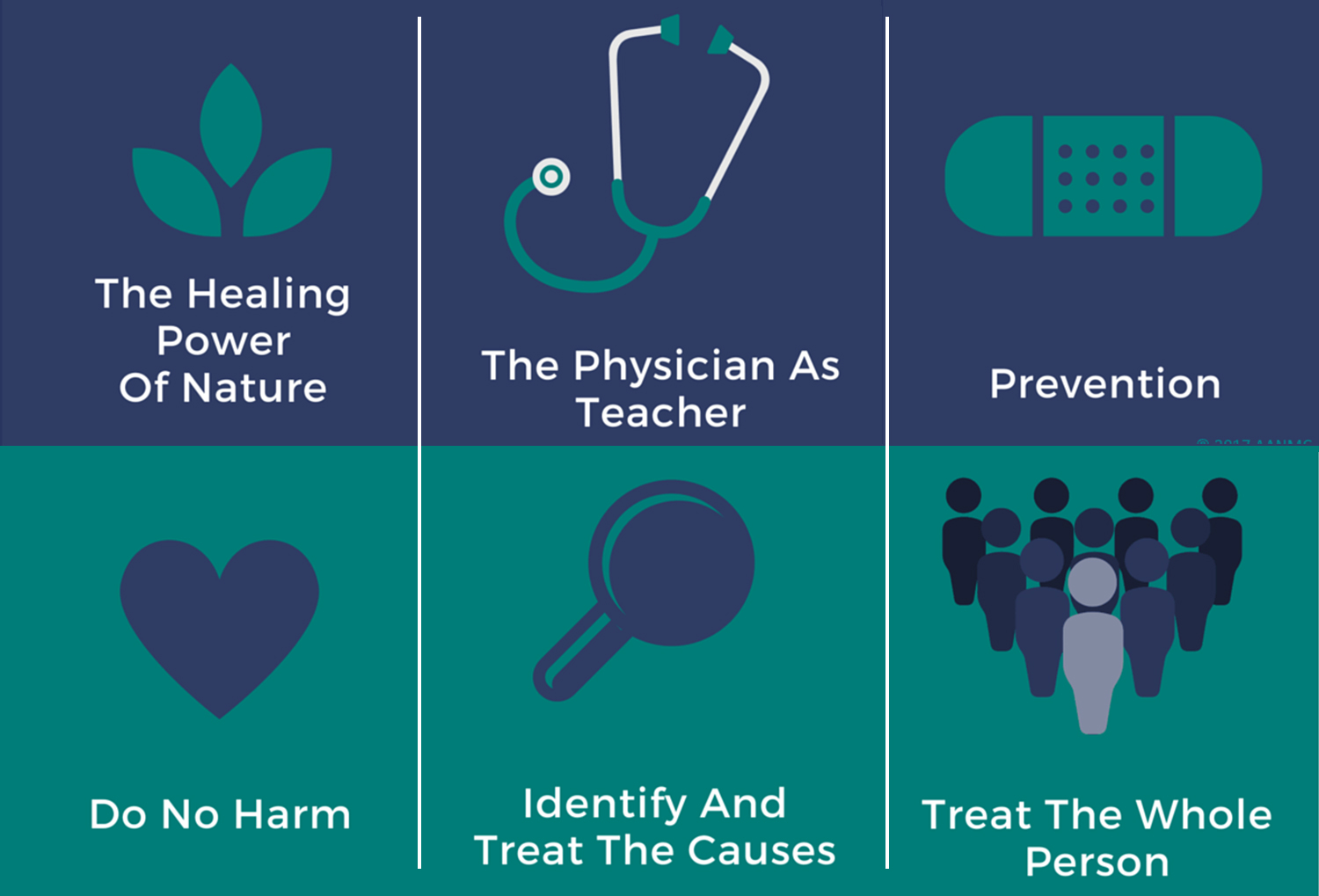 The Six Principles of Naturopathic Medicine
